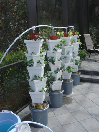 the urbanos vertical sembradores garden at appropedia hydroponic