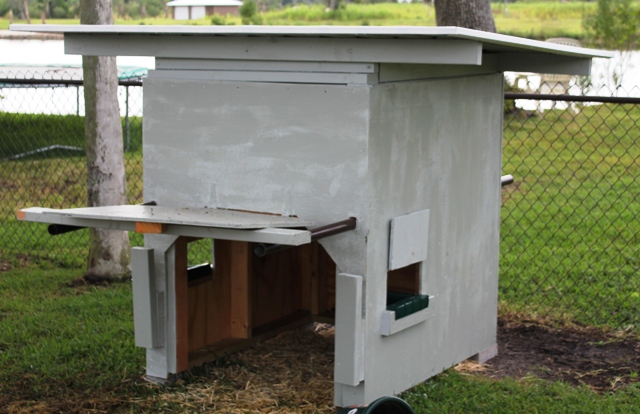 Pygmy Goat Shelter