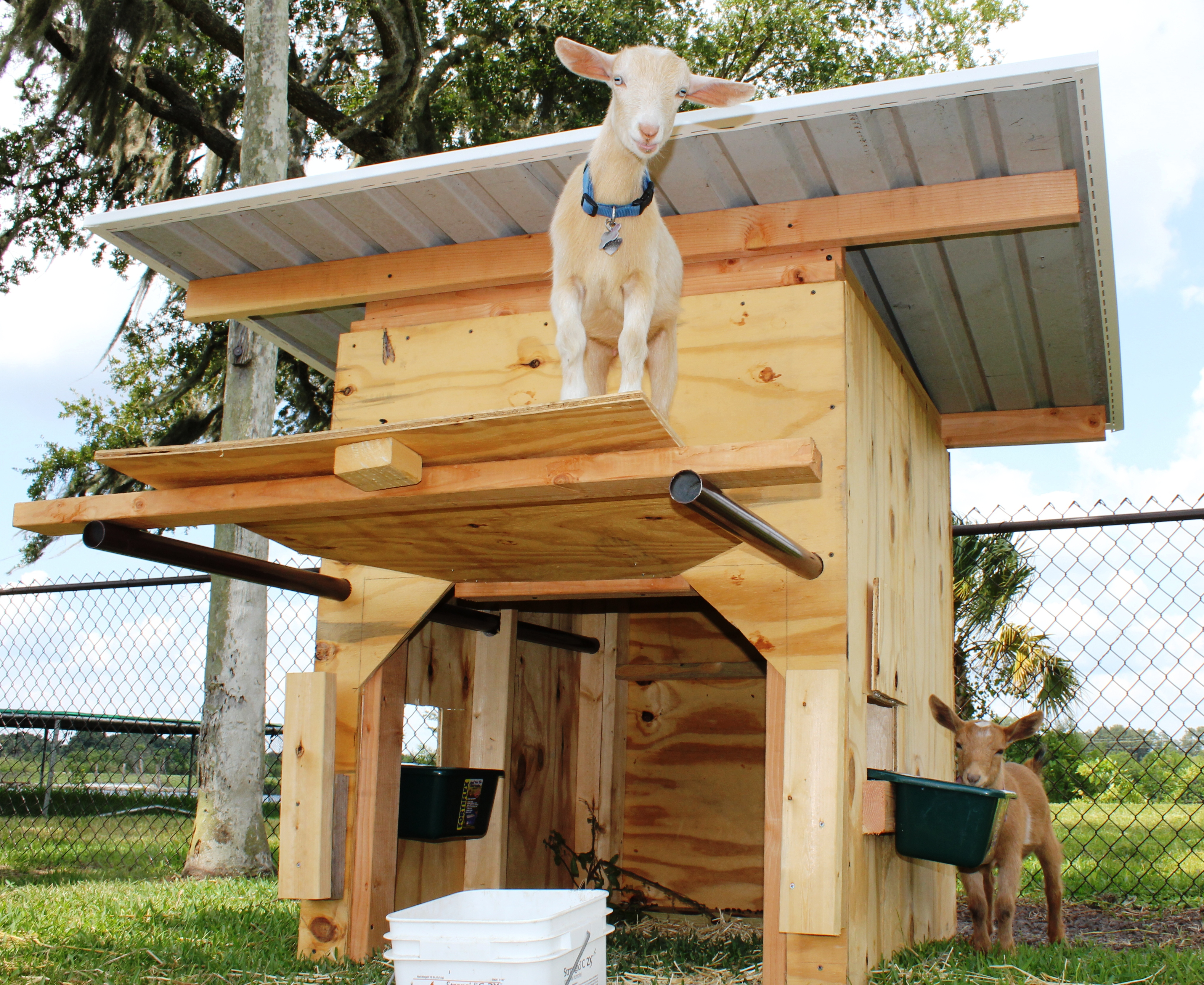 Portable goat shelter pick me yard Shelter house plans